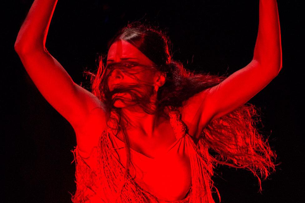flamenco-feeling