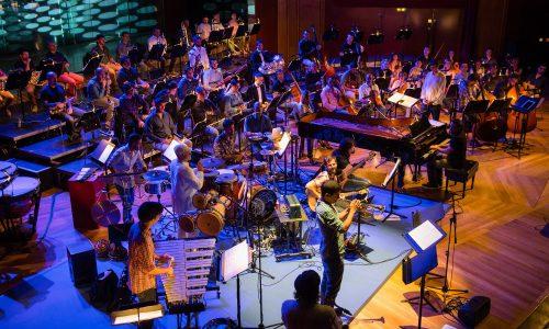 David Quevedo en Ensemble Salvaje Nacho González